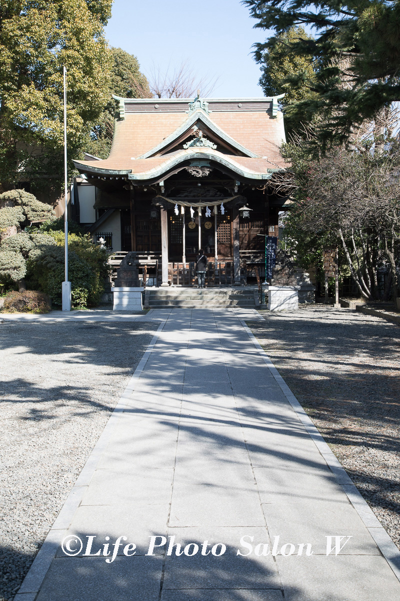 元住吉の住吉神社へのお宮参りの出張撮影