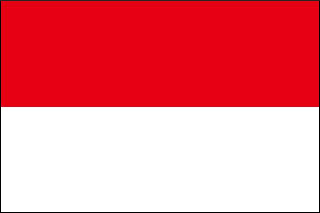 インドネシアビザ申請用写真規格(赤背景)