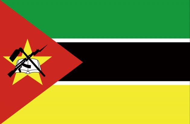 モザンビークビザ申請用写真規格