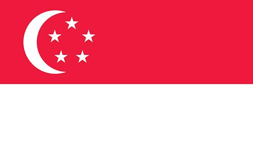 シンガポールビザ申請用写真規格