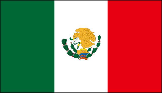 メキシコビザ申請用写真規格